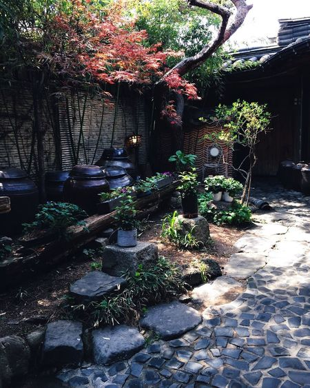 One of the many beautiful gardens at Insadong . Zen Garden Photography Garden Nature Photography Naturelovers Nature
