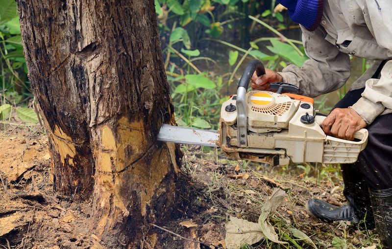 Low section of lumber jack cutting tree