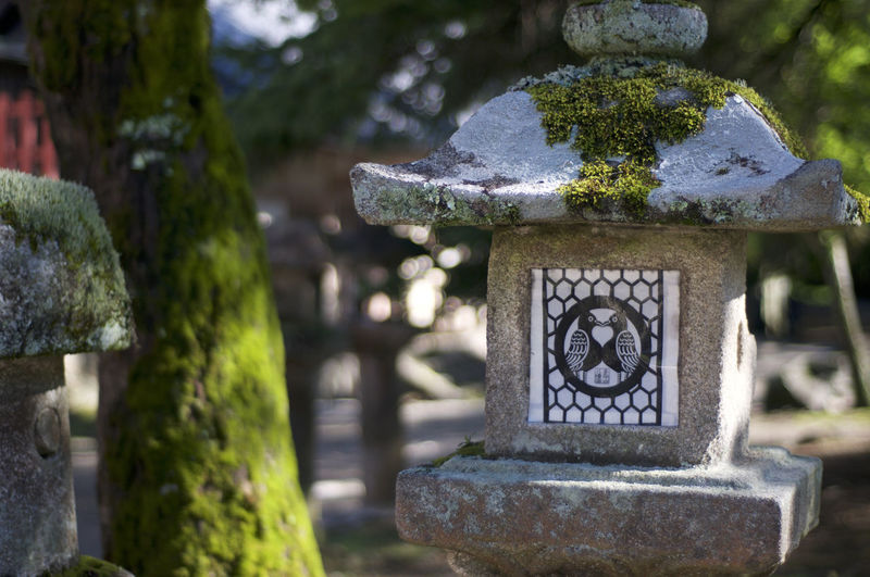 Close-up of stone lantern in cemetery