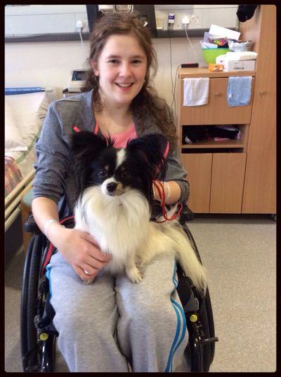 Wee doggie visiting the hospital Dog Visiting Hospital Cute