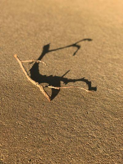 High angle view of arrow sign on sand