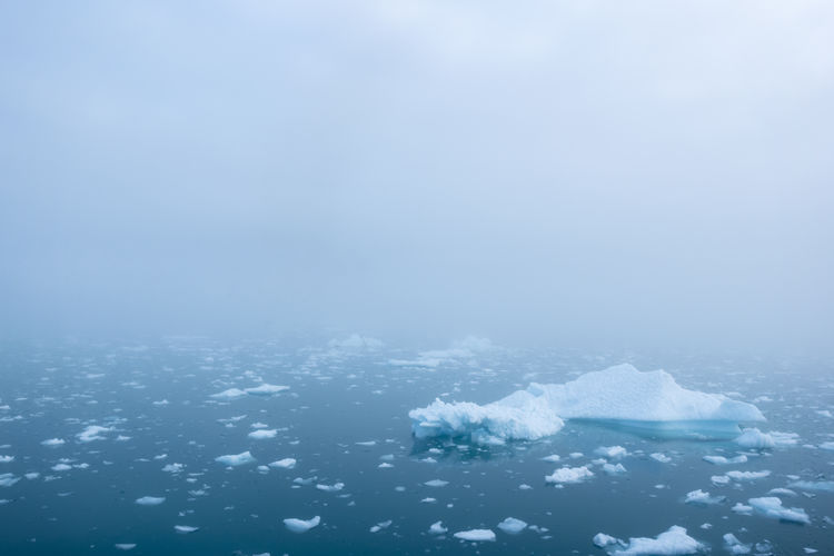Misty arctic sea Arctic Summer Beauty In Nature Blue Blue Color Blue Sea Blue Water Cold Cold Temperature Environment EyeEmNewHere Fog Ice Iceberg Icebergs Landscape Landscape Photography Mist Misty Misty Sea Nature Scenics Sea