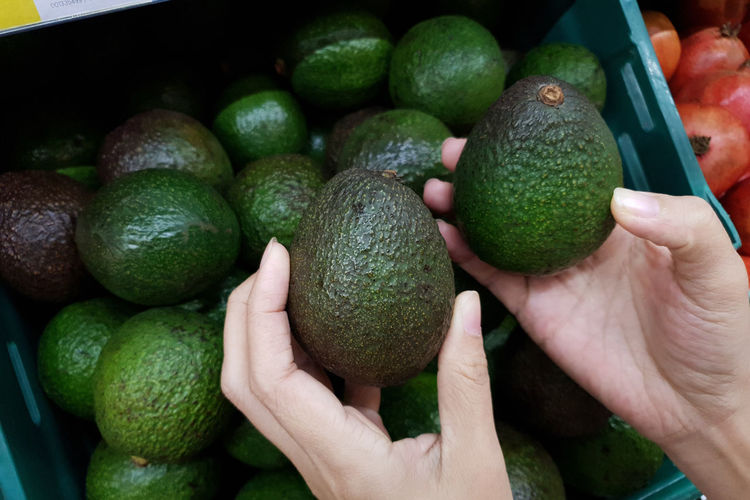 Close up female hands holding avocados Healthy Eating Fruit Food Human Hand Hand Freshness Wellbeing Human Body Part Holding Real People One Person Green Color Close-up Unrecognizable Person Avocado Market Day Finger Grocery Store
