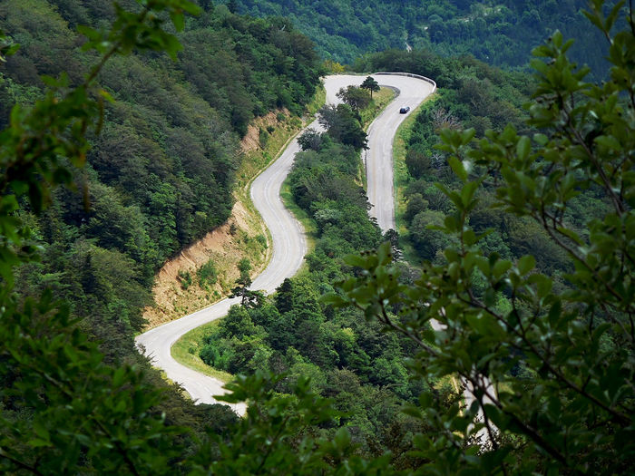 Elevated View Green Road Hairpin Turns Landscape_photography On The Road Outdoors Scenics The Way Forward Vercors View From Above Winding Road