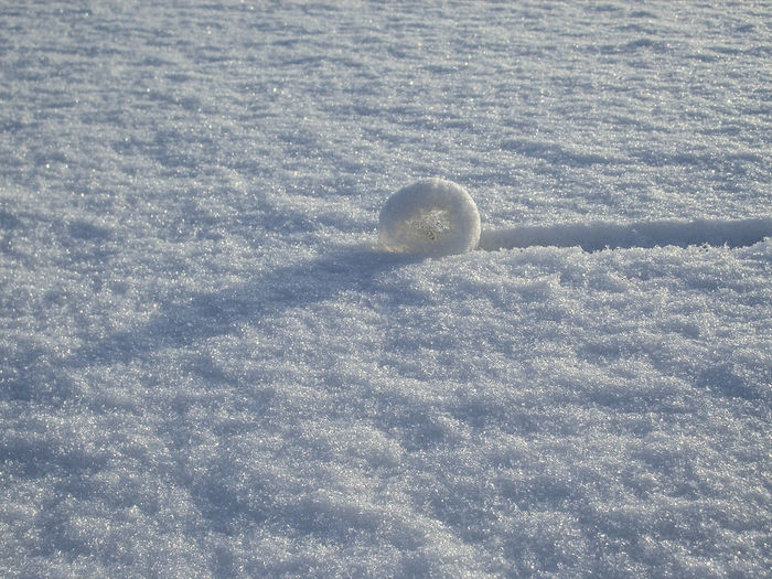 Snow wheel Cold Temperature Day Frozen Nature No People Outdoors Snow Weather Winter