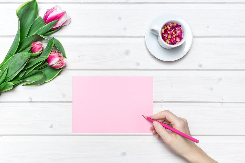 Tabletop scene with tulip flowers and a cup of tea with female hand writing on a pink paper Blank Paper Blank Paper On Table Directly Above Female Hands Female Hands Writing Flower Freshness High Angle View Human Body Part Human Hand Mockup Scene Nature Paper Pink Color Pink Paper Table Tabletop Scene Tulip Tulips Tulips Flowers View From Above Wedding Card Wedding Invitation