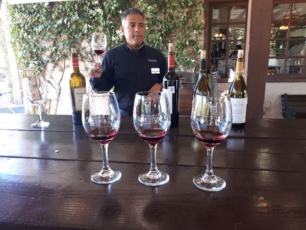 degustación de vino Winetasting Happy Hour Wineglass Alcohol Drink Wine Drinking Glass Men Table Bottle Wine Bottle Red Wine Sommelier Winery
