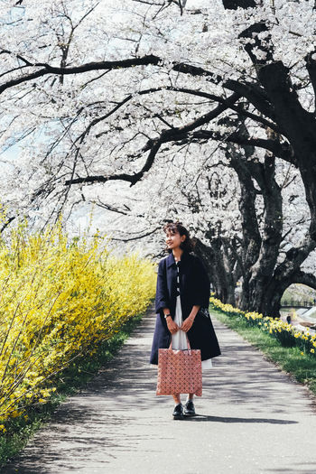 Sakura Plant Full Length Young Adult One Person Tree Real People Lifestyles Nature Adult Casual Clothing Leisure Activity Young Women Day Front View Women Footpath Fashion Road Growth Outdoors Sakura Sakura Blossom Sakura Trees