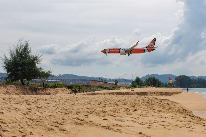 Nokair Landing Airplane Aircraft Plane Sky Bird Sky