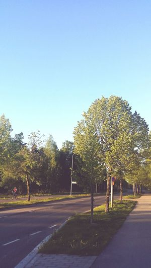 Finland Evening Sunset Peaceful Järvenpää