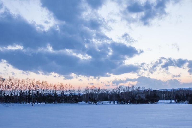 Winter Sky Cloud - Sky Snow Cold Temperature Beauty In Nature Tranquility Tranquil Scene Tree Scenics - Nature Nature No People Environment Non-urban Scene Frozen Landscape