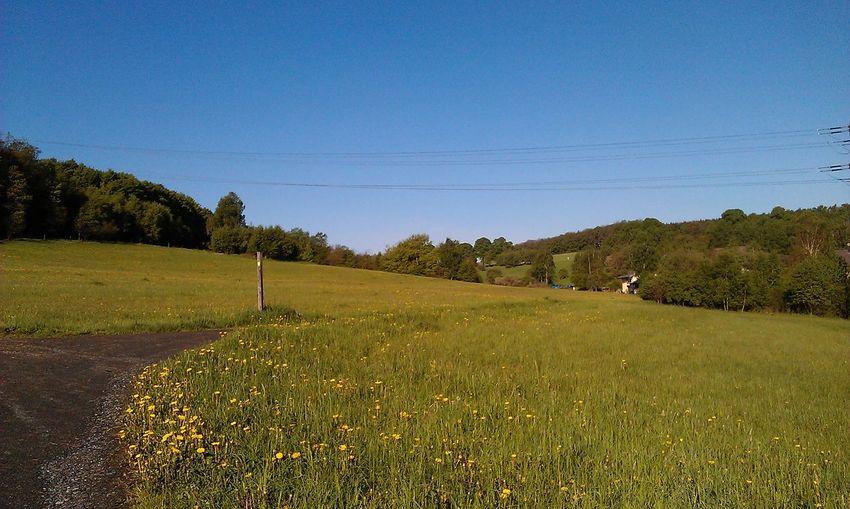 Landschaft!