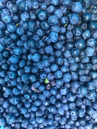 Full frame shot of blue berries