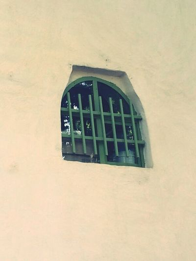 Kordan Youmustseeiran Window Green