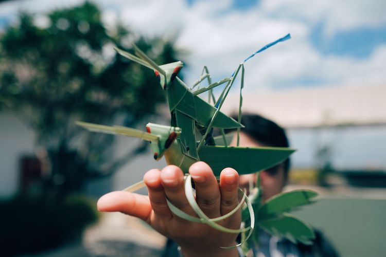 Close-up of person holding grasshoppers made from leaves