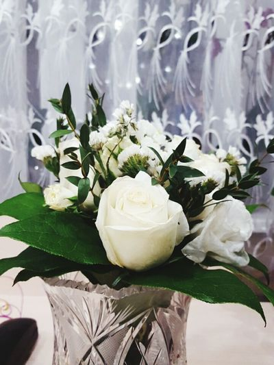 Flowers White Roses The Bride's Bouquets