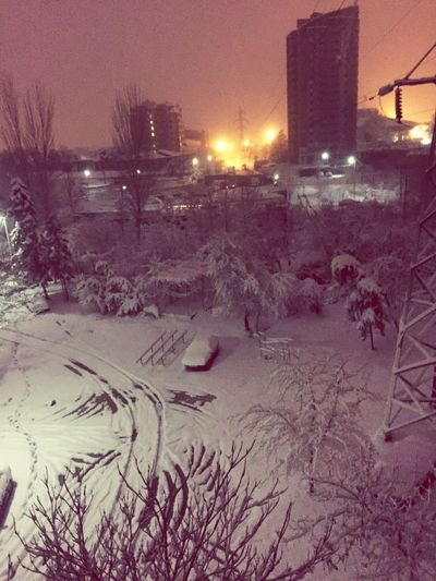 Powerful Winter First Eyeem Photo