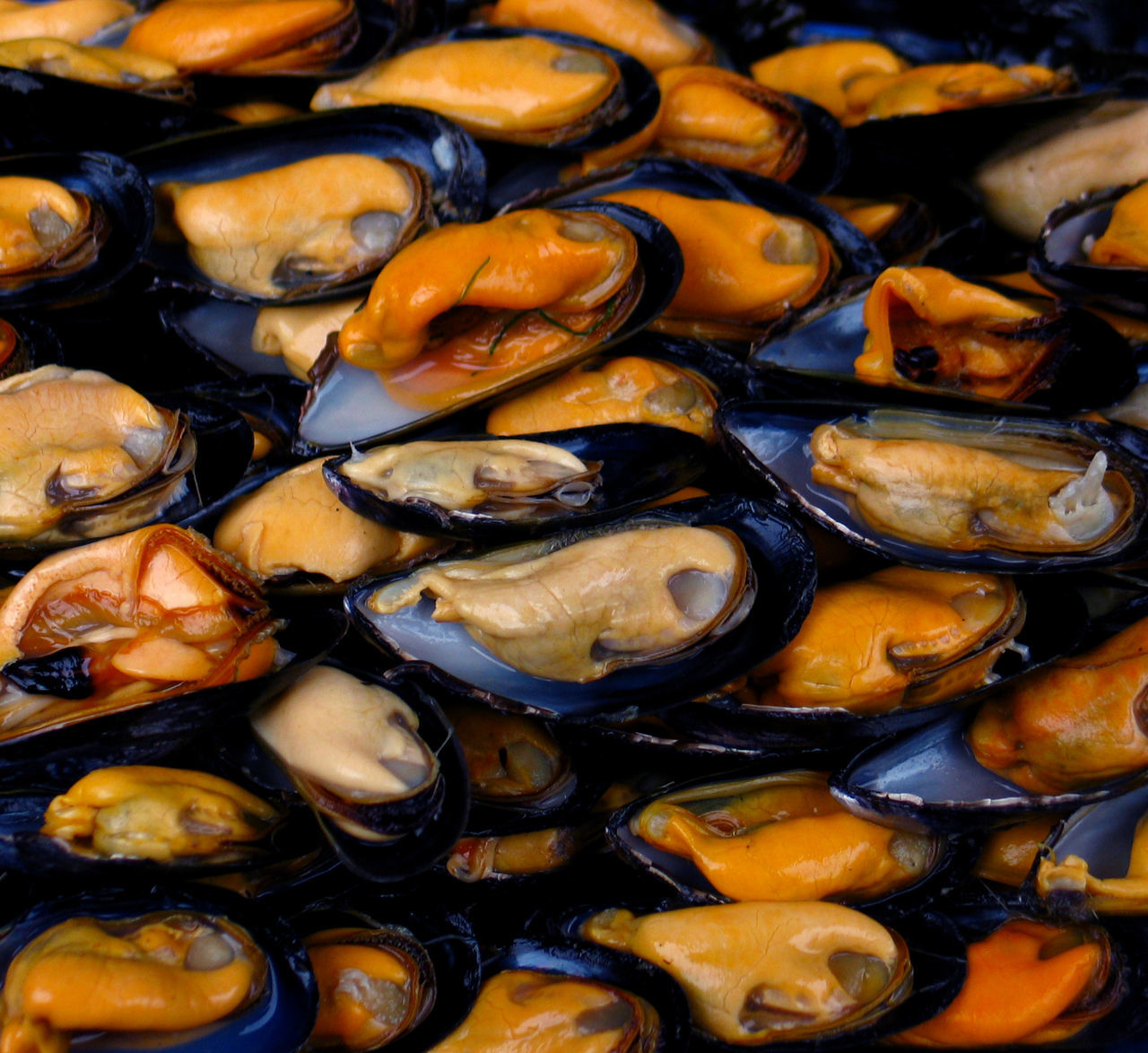 food and drink, food, seafood, freshness, full frame, healthy eating, wellbeing, backgrounds, no people, close-up, mussel, indoors, still life, large group of objects, high angle view, ready-to-eat, crustacean, abundance, shell, animal, temptation