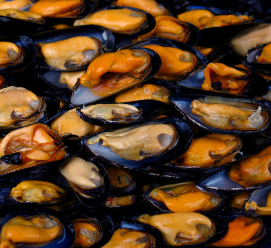 EXPOSED MUSSELS Backgrounds Close-up Crustacean Large Group Of Objects Mollusk Mussels Seafood Shells