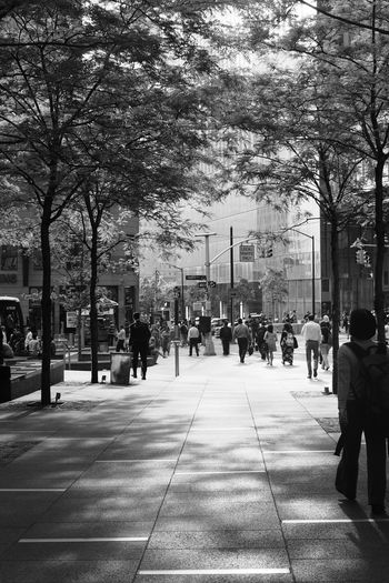 lights and shadow 9-11 memorial square, New York City Adult Adults Only Architecture Black And White City City Life Day Large Group Of People Men Nature Only Men Outdoors People Real People Shadows & Lights Sky Tree Walking Women Welcome To Black