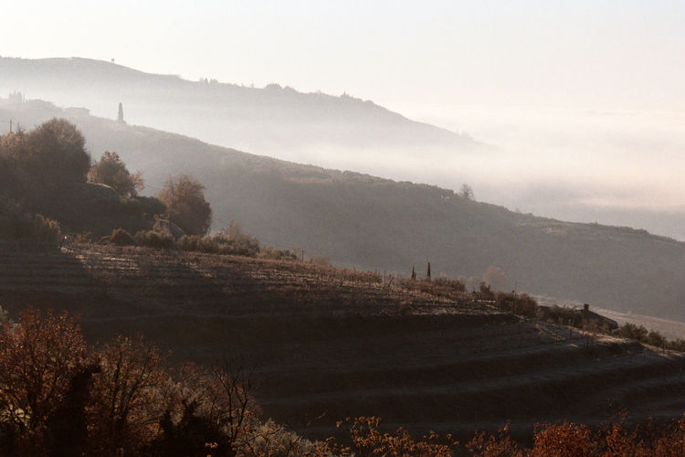 Agriculture Arid Climate Beauty In Nature Countryside Fog Geology Hill Hills Horizon Over Land Italy Landscape Majestic Mountain Mountain Range Nature Non-urban Scene Outdoors Physical Geography Remote Scenics Tranquil Scene Tranquility Traveling Valpolicella Vineyard