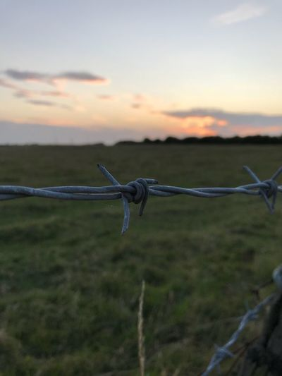 Protection Barbed Wire Safety No People Outdoors Sunset Sky Nature Day Beauty In Nature Animal Themes Water Close-up