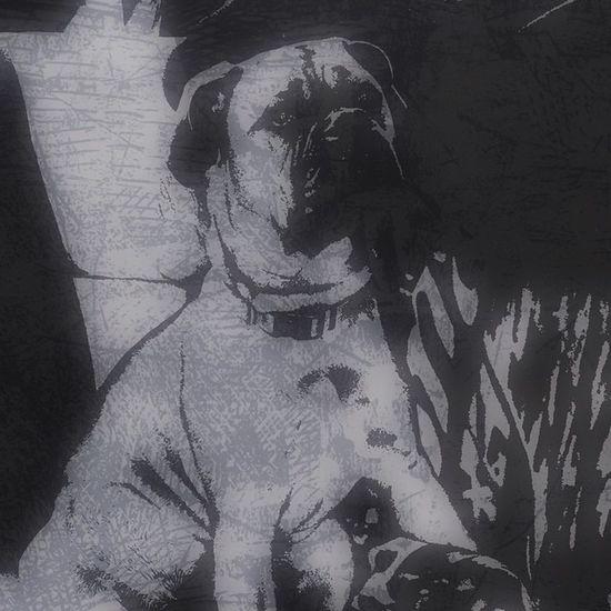 meg Bullmastiff Puppy Cool Awesome Black &white