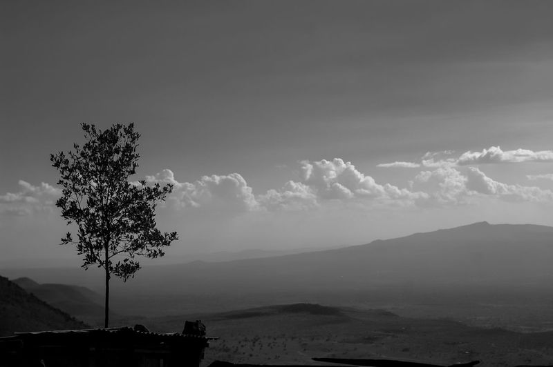 Tree Landscape Nature Cloud - Sky Outdoors No People Sky Mountain Night Thunderstorm The great rift valley