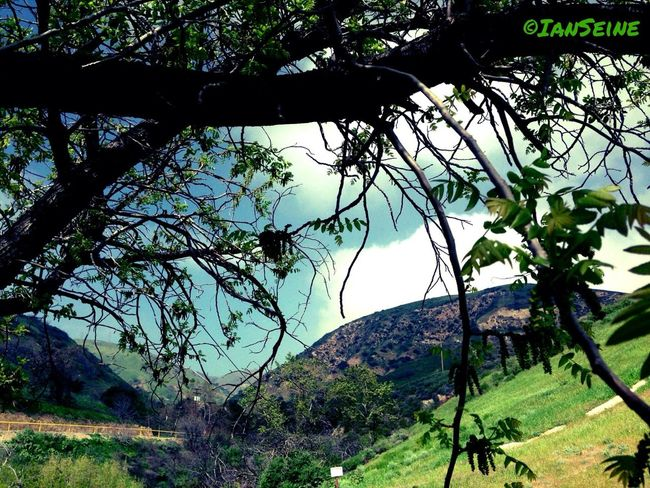 Relaxing Mountains Trees Eye4photography