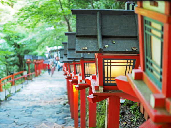 Stairs with red lanterns (赤色の灯籠が並ぶ階段) A Shrine Ad Beautiful Copy Space Green Japan Lantern Lanterns Light Nature Red Stairs Black Color Building Close-up Gray Kibune Shrine Landscape Margin Outdoors Red Shrine Text Space White 灯籠
