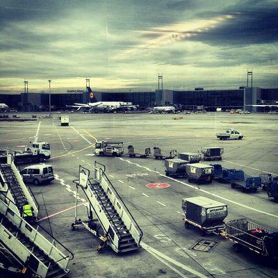 #frankfurt #airport #flughafen #airplane #lufthansa #architecture #Berlin #igersberlin #instagood #tweegram #photooftheday #follow #instamod #igers #picoftheday #instragamhub #instadaily #insta_germany #bestoftheday #igdaily #webstagram #instragramers #ig Follow Instamod All_shots Bestoftheday Igers IGDaily Tweegram Instagood Webstagram Architecture Instadaily Berlin Igersberlin Airplane Insta_germany Airport Flughafen Frankfurt Gf_germany Photooftheday Instragramers Picoftheday Ig_special Lufthansa Instragamhub