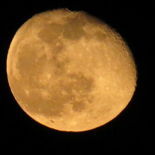 Last Night's moon at my lake Moonlover Amazing Beautiful