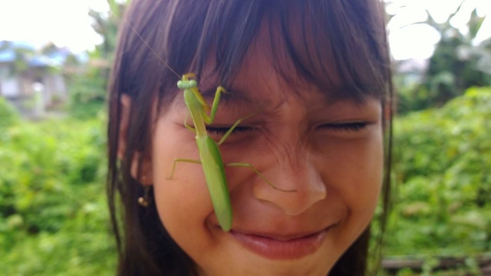 my nephew playing with mantis, lol One Woman Only Only Women One Person Day Plant Smiling Beautiful Woman Kidsphotography Kids Smile Mantis Indonesian Street (Mobile) Photographie Indonesia_photography INDONESIA Freshness Beauty Out Of The Box