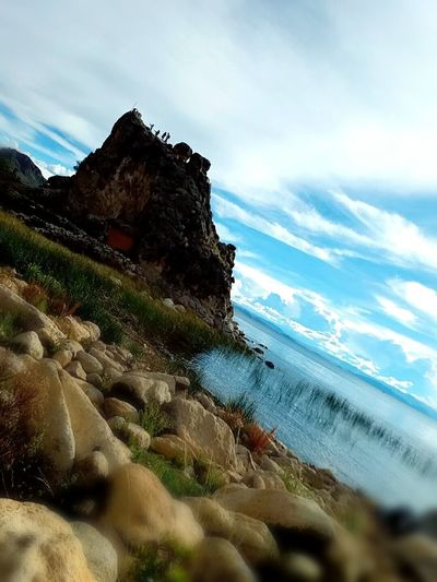 Beauty In Nature Sky Photography Nature Photography Photo♡ PhonePhotography Cats Of EyeEm Beautiful Beauty Tree Bough Coulds And Sky Persons Island Isla Del Sol , Bolivia Copacabana Bolivia Titicaca Summer Beauty In Nature Beautiful Nature Photography