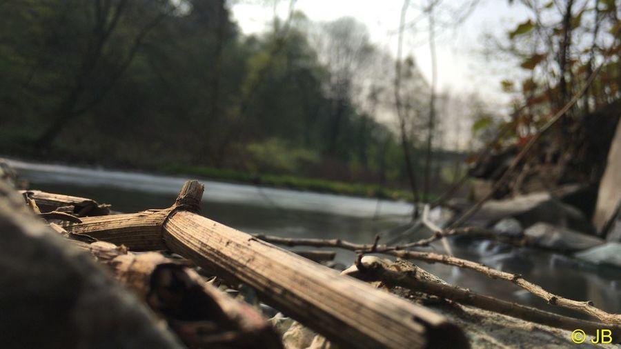 Fluss Wupper
