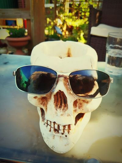 scull Day