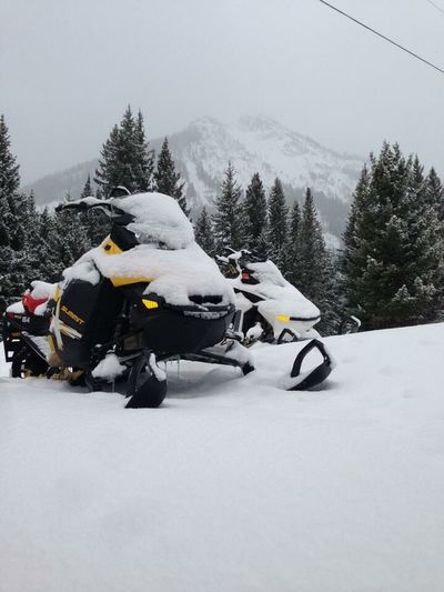 Snow Sports Snow Cold Temperature Winter Tree Outdoors Beauty In Nature Mountain Sky Snowing Snowmobiling