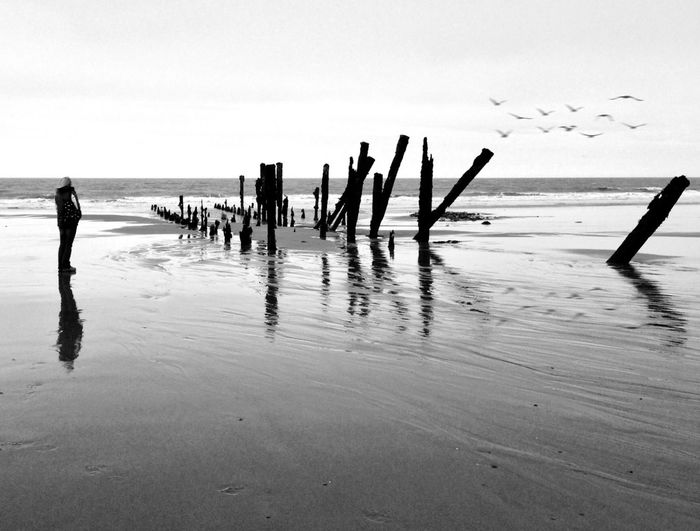 View of wooden posts in sea