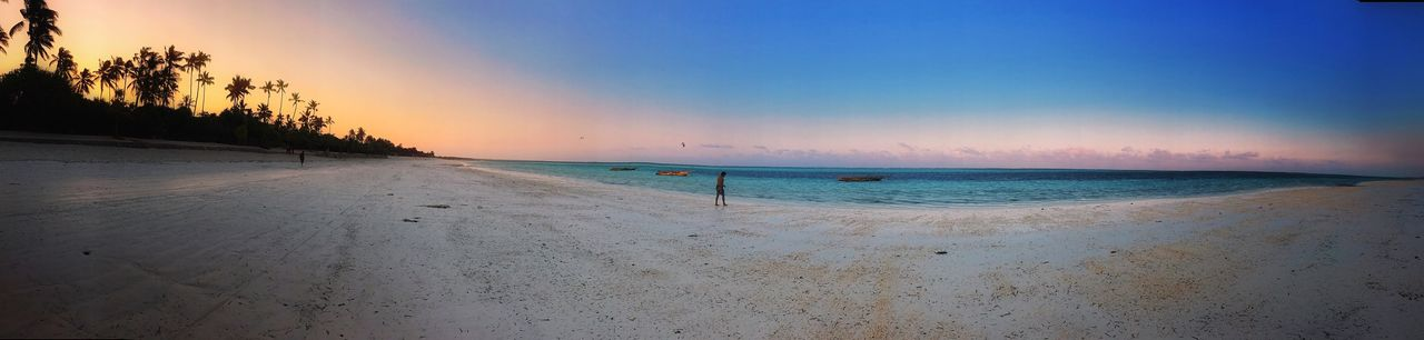 EyeEm Selects Beach Sand Sea Beauty In Nature Nature Water Scenics Shore Tranquil Scene Sunset Horizon Over Water Sky Tranquility Outdoors No People Clear Sky Vacations Blue Panoramic Tree