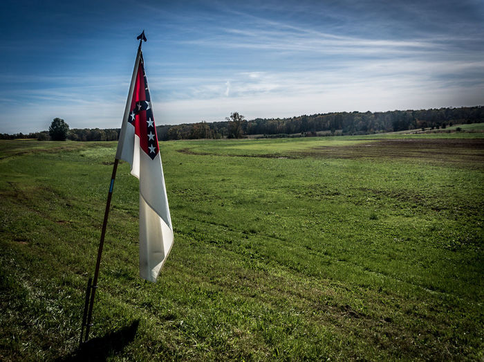 Confederate Battleflag Agriculture Balance Battle Flag Carefree Clear Sky Confederateflag Day Escapism Farm Field Flag Grass Grassy Green Color Identity Landscape Outdoors Pole Recreational Pursuit Rural Scene Tree Weekend Activities