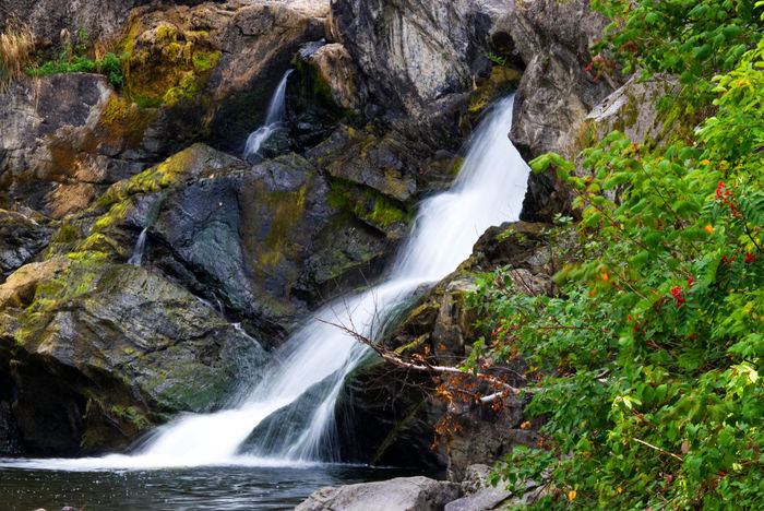 Soft waterfalls coming out of the rocks Beauty In Nature Blurred Motion Day Forest Long Exposure Motion Nature No People Outdoors Power In Nature Rock - Object Scenics Water Waterfall