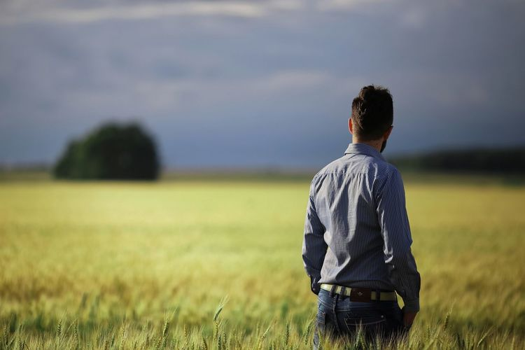 Rear view of man standing amidst wheat field against cloudy sky