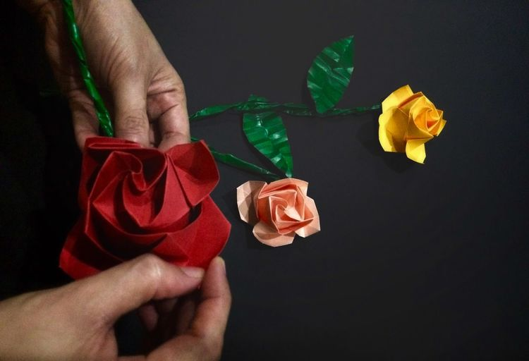 Cropped image of hands holding paper flowers