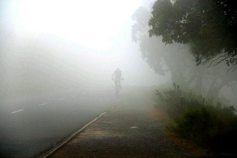 People walking on road in foggy weather