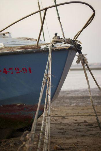 Fishing Boat Detalles Barco De Pesca