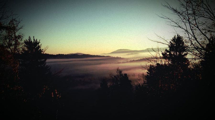 Beauty In Nature Clear Sky Forest Jobtime Landscape Morning Fog Nature Sunrise Tranquility First Eyeem Photo EyeEmNewHere