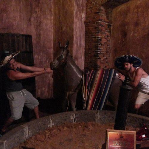 No Museu da Tequila