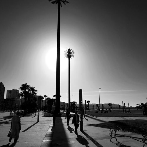 Sol Contraluz Moroco Palmera Hombre Flag Patriotism Beach Large Group Of People Day Sky Sea People Military Outdoors Politics And Government Adult Adults Only