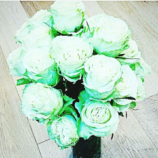 green roses, undyed