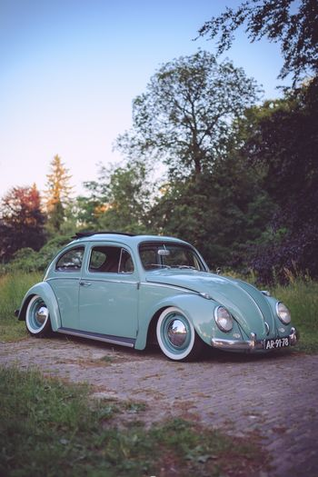 Bug Canon 6D Photography Canon Holland Volkswagen VW Beetle Beetle Kever Ragtop
